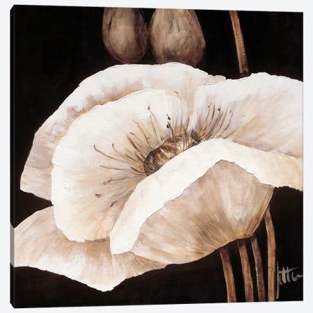 Amazing Poppies I Canvas Print #JET7} by Jettie Roseboom Canvas Artwork
