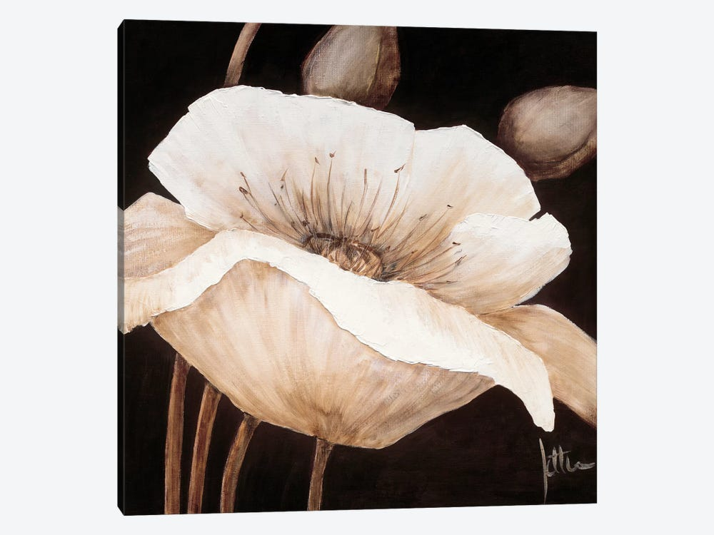 Amazing Poppies II by Jettie Roseboom 1-piece Canvas Artwork