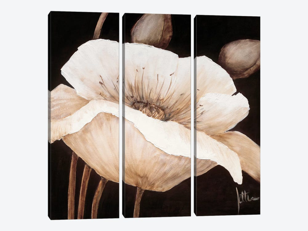 Amazing Poppies II by Jettie Roseboom 3-piece Canvas Wall Art