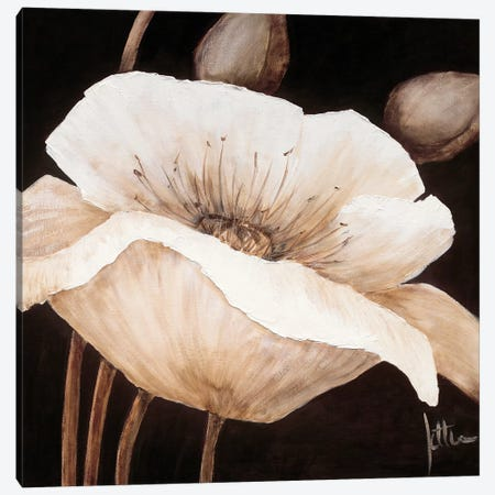 Amazing Poppies II Canvas Print #JET8} by Jettie Roseboom Art Print