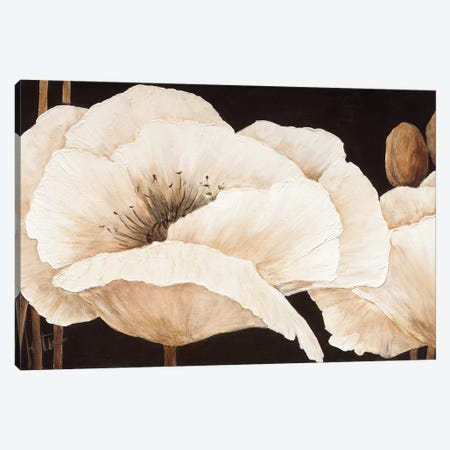 Amazing Poppies III Canvas Print #JET9} by Jettie Roseboom Canvas Art Print