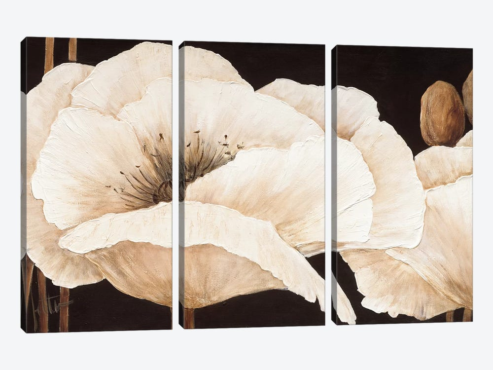 Amazing Poppies III by Jettie Roseboom 3-piece Canvas Print