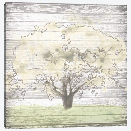 Barn Tree I Canvas Print #JEV1001} by June Erica Vess Canvas Print