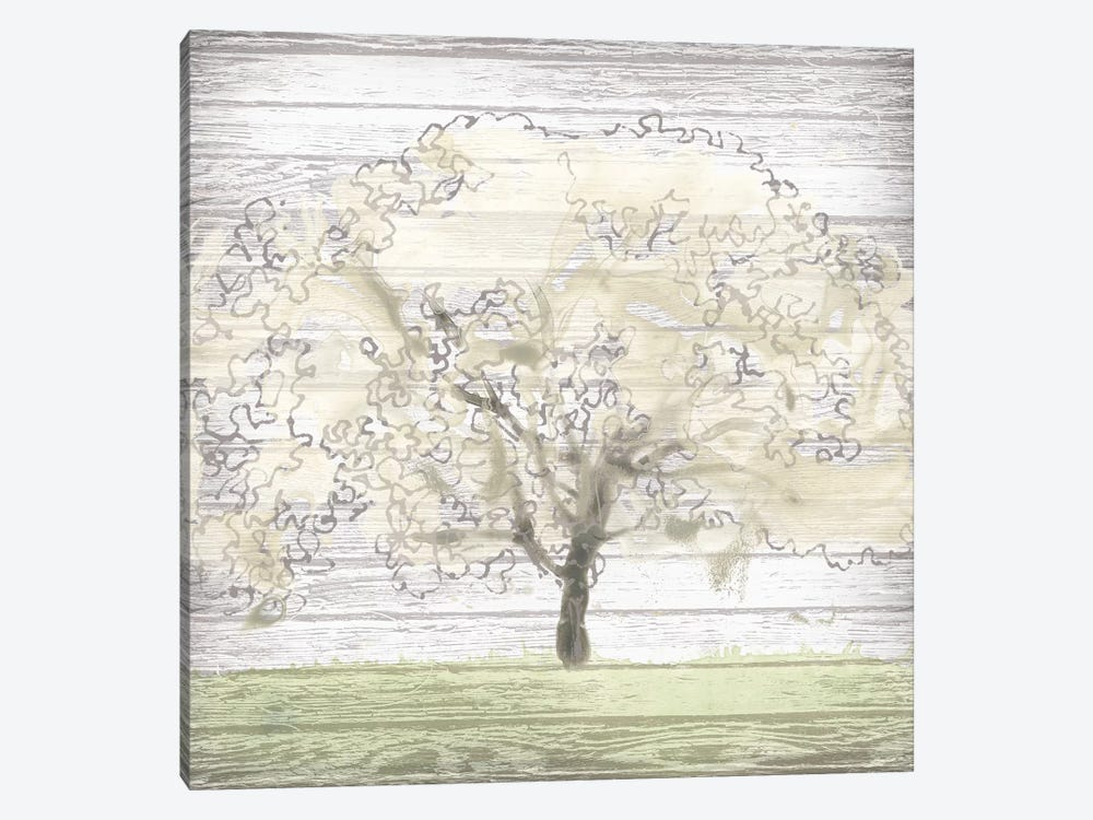 Barn Tree II by June Erica Vess 1-piece Canvas Art Print