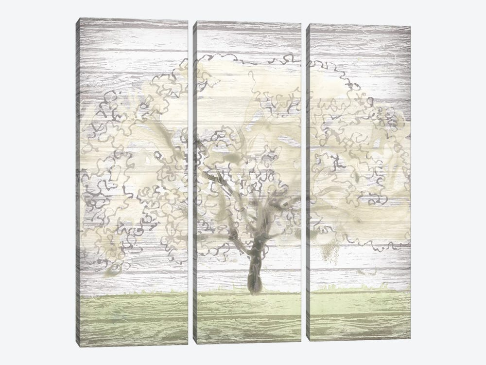 Barn Tree II by June Erica Vess 3-piece Canvas Print