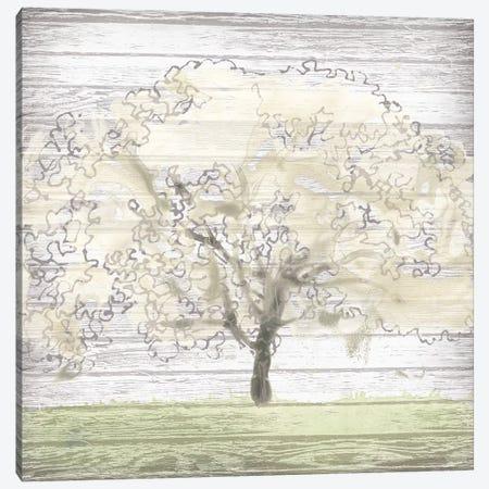 Barn Tree II Canvas Print #JEV1002} by June Erica Vess Canvas Print