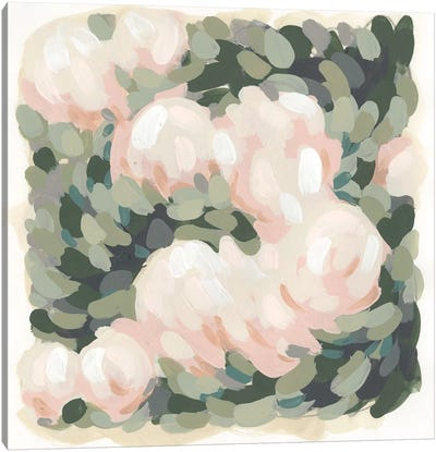 Blush & Celadon I Canvas Art Print