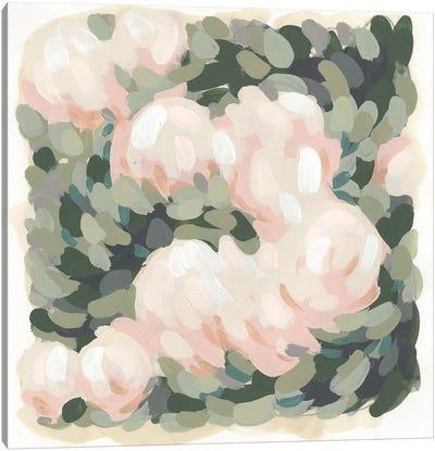 Blush & Celadon I Canvas Art Print