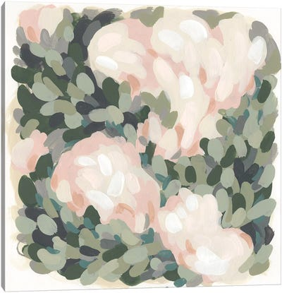 Blush & Celadon II Canvas Art Print