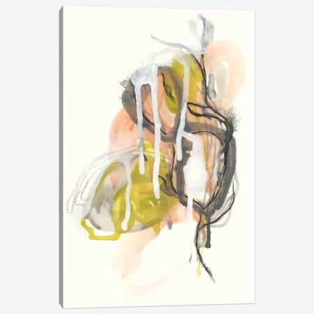 Chimera I Canvas Print #JEV1023} by June Erica Vess Canvas Art Print