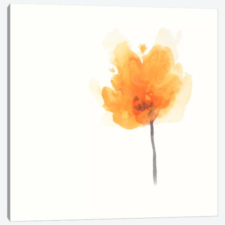 Expressive Blooms IX Canvas Print #JEV107} by June Erica Vess Canvas Wall Art