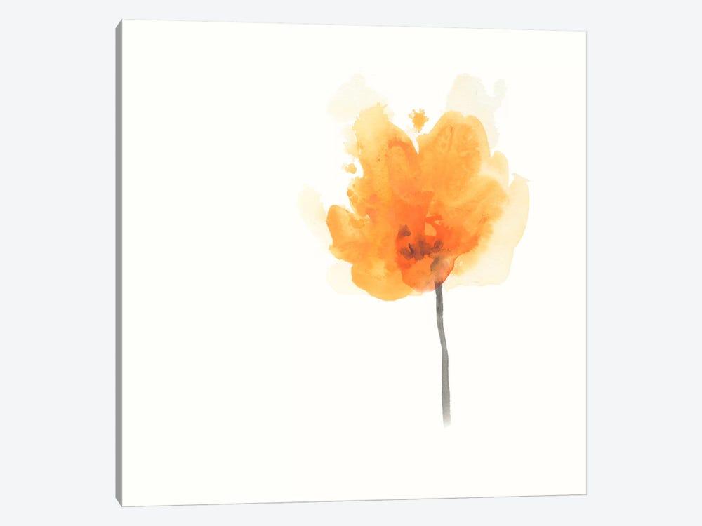 Expressive Blooms IX by June Erica Vess 1-piece Canvas Wall Art