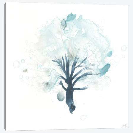 Liquid Arbor I Canvas Print #JEV1091} by June Erica Vess Canvas Wall Art