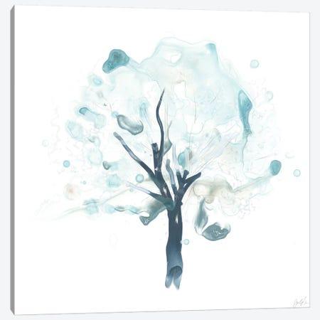 Liquid Arbor II Canvas Print #JEV1092} by June Erica Vess Canvas Art