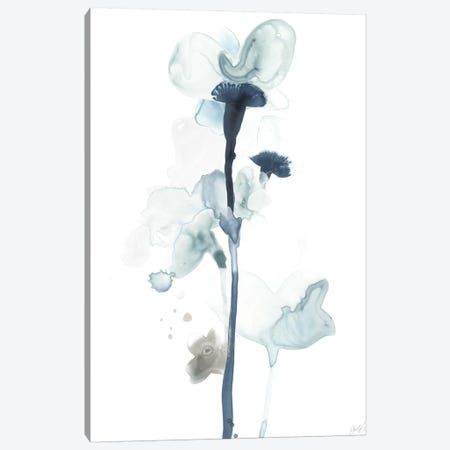 Midnight Blossoms I Canvas Print #JEV1097} by June Erica Vess Art Print