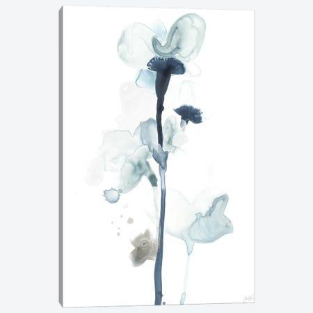 Midnight Blossoms I Canvas Print #JEV1097} by June Erica Vess Art Print