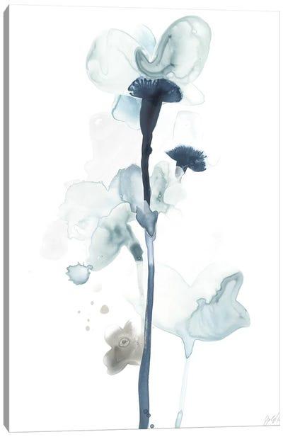 Midnight Blossoms I Canvas Art Print