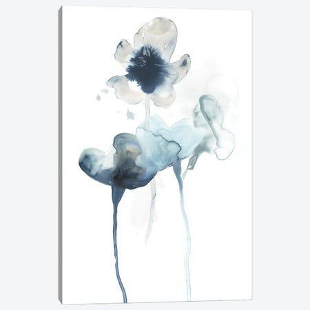 Midnight Blossoms II Canvas Print #JEV1098} by June Erica Vess Canvas Artwork