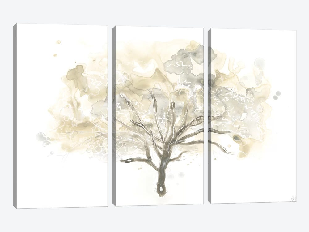 Neutral Arbor I by June Erica Vess 3-piece Canvas Wall Art