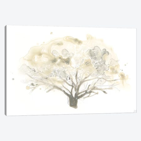 Neutral Arbor II Canvas Print #JEV1114} by June Erica Vess Canvas Artwork