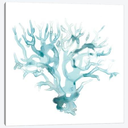Ocean Cameo I Canvas Print #JEV1121} by June Erica Vess Canvas Art