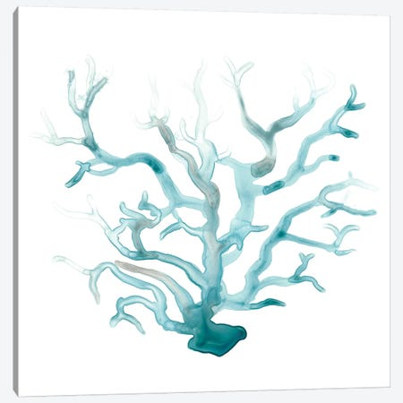 Ocean Cameo III Canvas Print #JEV1123} by June Erica Vess Canvas Art