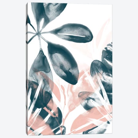 Tropical Blush I Canvas Print #JEV1154} by June Erica Vess Canvas Art