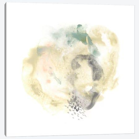 Galaxy I Canvas Print #JEV115} by June Erica Vess Canvas Print