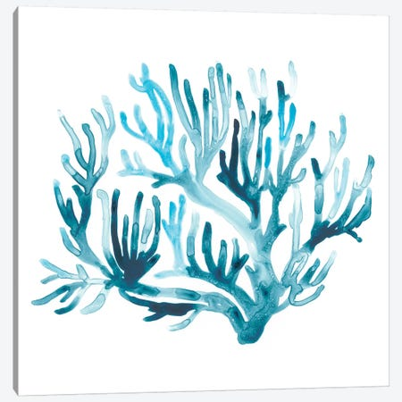 Azure Seafan III Canvas Print #JEV1168} by June Erica Vess Canvas Artwork