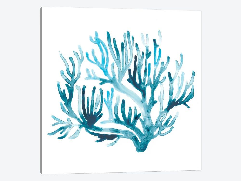 Azure Seafan III by June Erica Vess 1-piece Canvas Wall Art