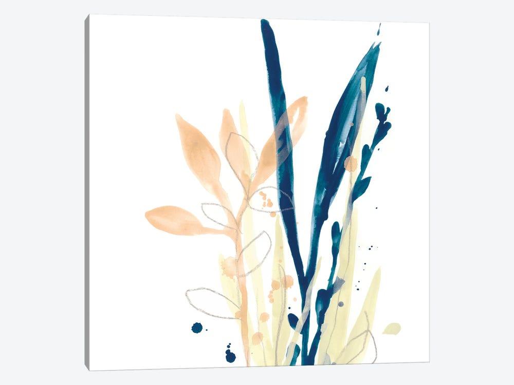 Botany Gesture IX by June Erica Vess 1-piece Canvas Print