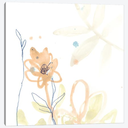 Botany Gesture VI Canvas Print #JEV1200} by June Erica Vess Canvas Art Print