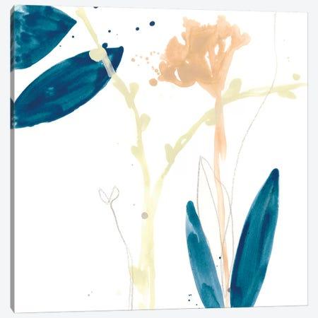Botany Gesture VII Canvas Print #JEV1201} by June Erica Vess Canvas Art Print