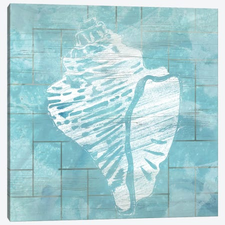 Cerulean Shell III Canvas Print #JEV1209} by June Erica Vess Art Print