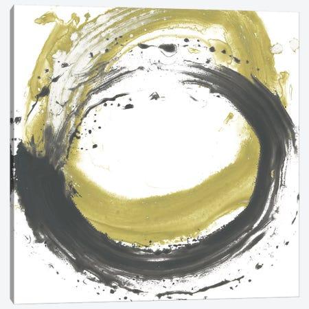 Circular Reaction III Canvas Print #JEV1215} by June Erica Vess Canvas Art Print