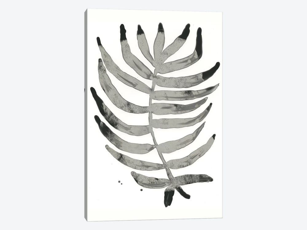 Foliage Fossil IV by June Erica Vess 1-piece Canvas Artwork