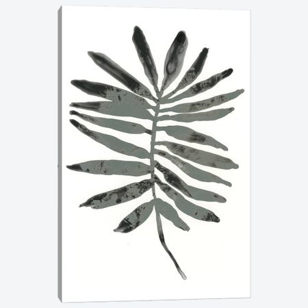 Foliage Fossil VII Canvas Print #JEV1238} by June Erica Vess Canvas Art