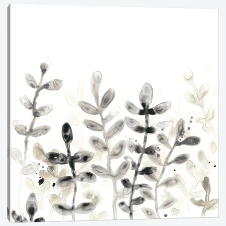 Liquid Stems I Canvas Print #JEV1290} by June Erica Vess Canvas Art