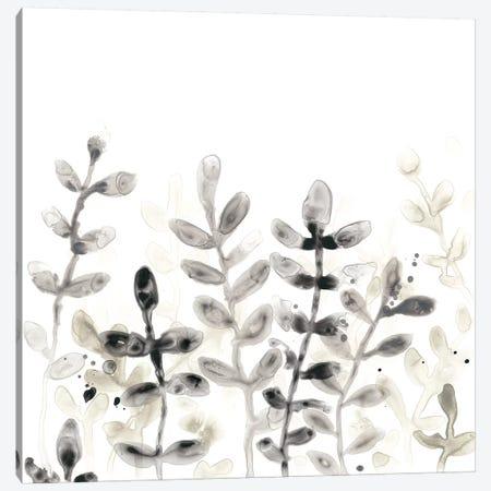 Liquid Stems I Canvas Print #JEV1290} by June Erica Vess Canvas Art