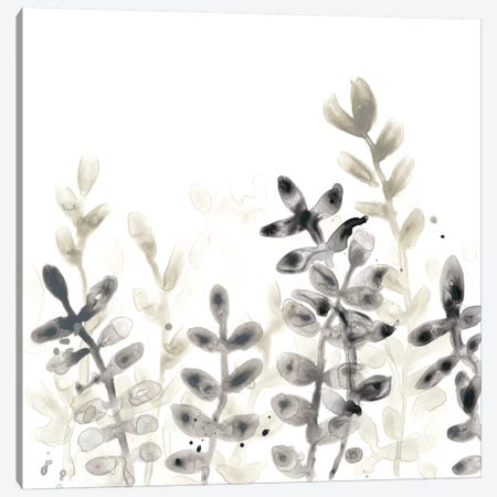 Liquid Stems II 3-Piece Canvas #JEV1291} by June Erica Vess Canvas Artwork