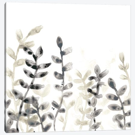 Liquid Stems IV Canvas Print #JEV1293} by June Erica Vess Canvas Artwork