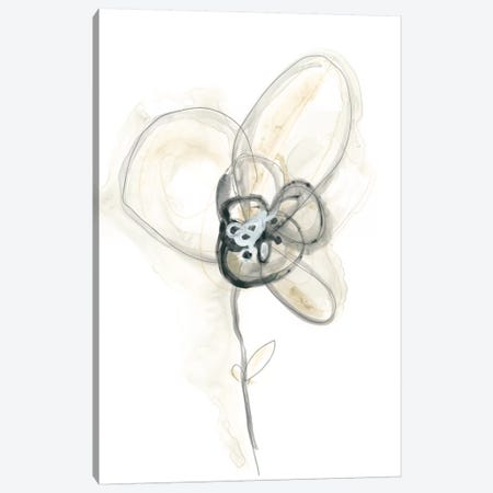 Monochrome Floral Study I Canvas Print #JEV1305} by June Erica Vess Canvas Print