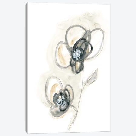 Monochrome Floral Study II Canvas Print #JEV1306} by June Erica Vess Canvas Print