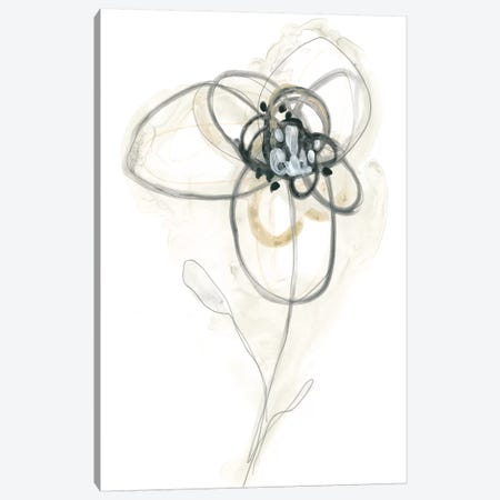 Monochrome Floral Study IV Canvas Print #JEV1308} by June Erica Vess Canvas Wall Art