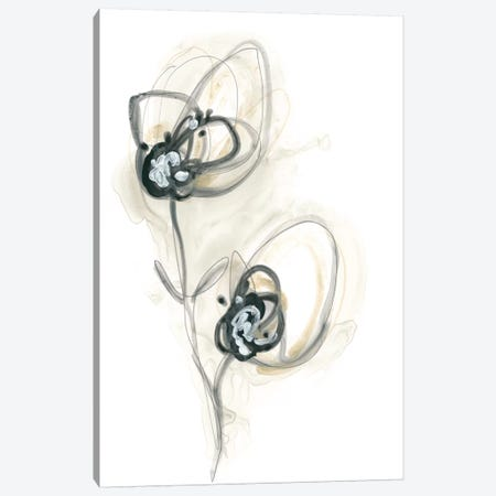 Monochrome Floral Study IX Canvas Print #JEV1309} by June Erica Vess Canvas Artwork