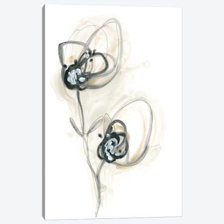 Monochrome Floral Study IX Canvas Print #JEV1309} by June Erica Vess Canvas Artwork