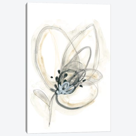 Monochrome Floral Study V Canvas Print #JEV1310} by June Erica Vess Canvas Art Print