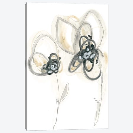 Monochrome Floral Study VI Canvas Print #JEV1311} by June Erica Vess Canvas Art Print