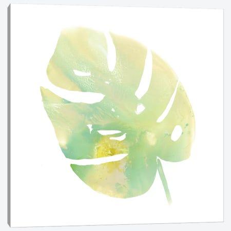 Prisma Tropical I Canvas Print #JEV1354} by June Erica Vess Canvas Art