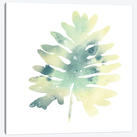 Prisma Tropical VI Canvas Print #JEV1359} by June Erica Vess Art Print